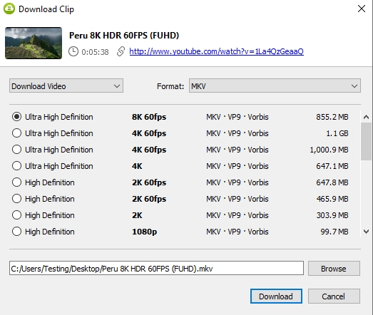 Select a quality type in the download window and press 'Download' button.